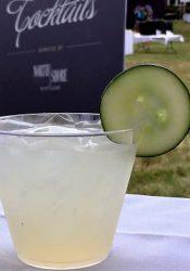 Cucumber Gin Fizz (2)
