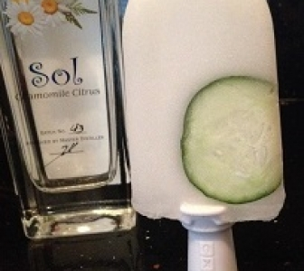 Sol and Tonic Popsicle